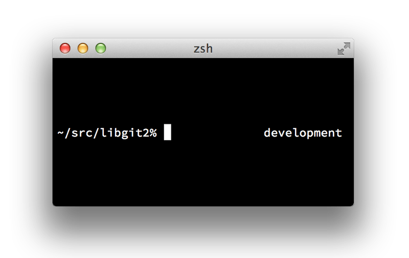Customized `zsh` prompt.